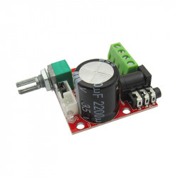 2x10W Audio Amplifier Module