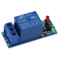 Relay Module (Ordered with 12V)